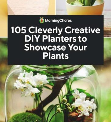 105-Cleverly-Creative-DIY-Planters-to-Showcase-Your-Plants-PIN-364x800