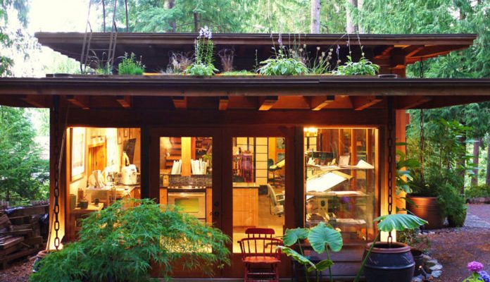 Cabin-with-living-roof-10-696x522