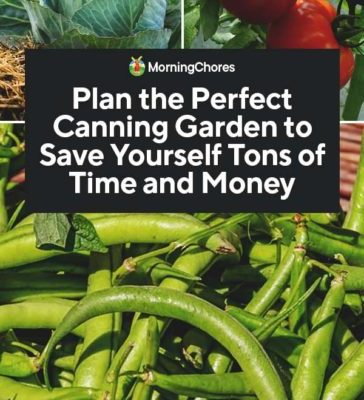 Plan-the-Perfect-Canning-Garden-to-Save-Yourself-Tons-of-Time-and-Money-PIN-364x800