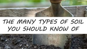 types-of-soil-post-300x171
