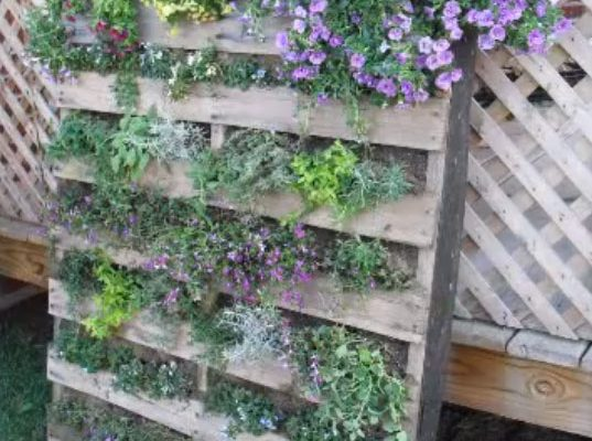 vertical-pallet-garden1